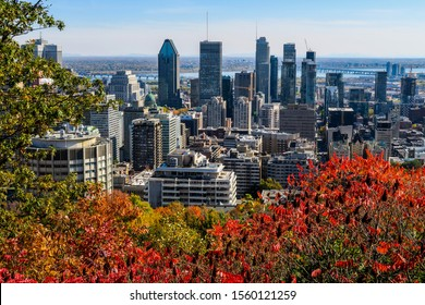 montreal-canada-october-20-2019-260nw-15