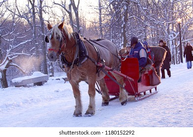 MONTREAL, QUEBEC, CANADA - January 1, 2007 - Residents and tourists enjoy a frosty day, some riding in a horse drawn sleigh, others walking on the Mount Royal trail