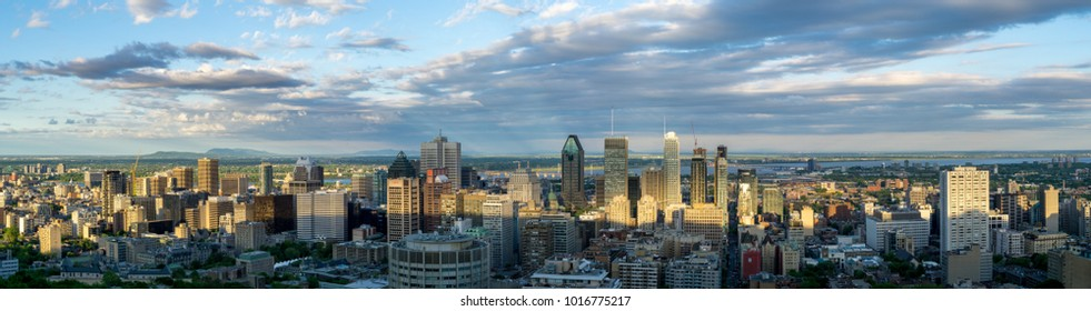 The Montreal skyline during afternoon light