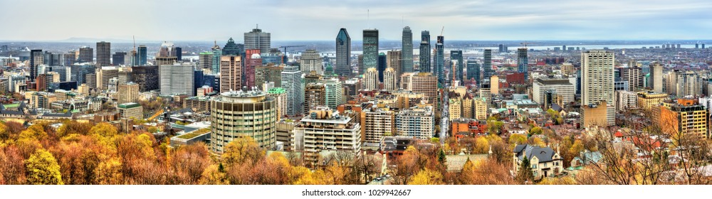 Montreal skyline from Mont Royal - Quebec, Canada
