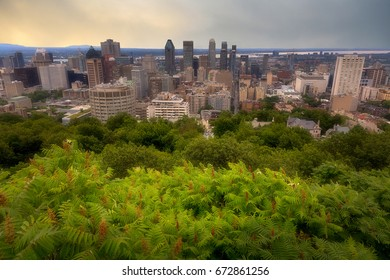 Montreal Skyline View