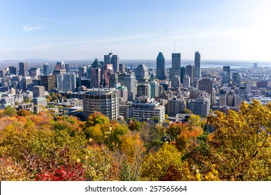 Montreal,Quebec,Canada-October 14-2014: Autumn Colourful trees, and in the background, the downtown of Montreal, view to  Mount Royal Park, with some little bit Numeric noise.