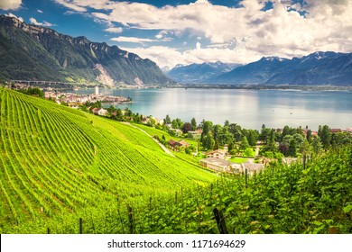 Montreux city with Swiss Alps, lake Geneva and vineyard on Lavaux region, Canton Vaud, Switzerland, Europe.