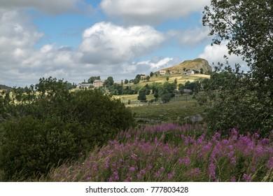 Monts d' Aubrac , lozère , French
