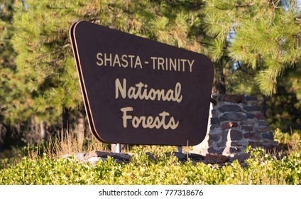 A monument sign marks the boundary of public National Forest land in California