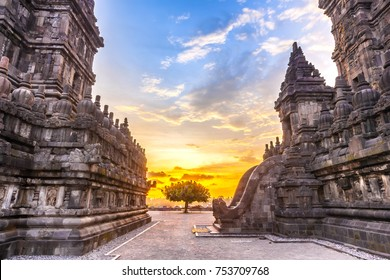 Monumental ancient architecture at beautiful sunset, carved stone walls and a lonely tree between them. Candi Prambanan Hindu Temple, Yogyakarta, Jawa, Indonesia.