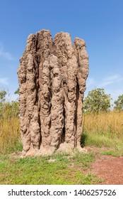 Monumental termite mound in Kakadu National Park, Northern Australia, on a beautiful sunny day