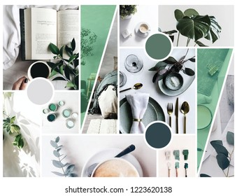 A mood board express the feeling of cozy, comfy, and green. I design it for those who love green and cozy, wish to design their home in the similar way.