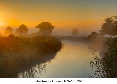 MOODY DAWN on the Umzimkulwana River, Underberg, South Africa. Sun rising through the fog coming off the water. Umzimkulu Valley