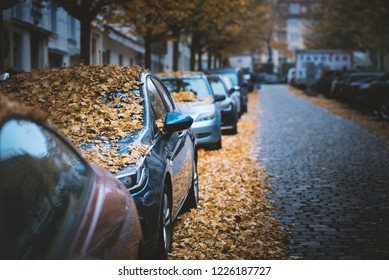 Moody day in the city. Orange, yellow leaves on the cars during a autumn period. Prague city in a Europe. Fall background with vehicles on the street. Cars covered by leaves.