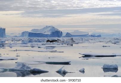Moody Iceberg Bay - Northeast Greenland National Park