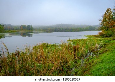 Moody and misty autumn lake early morning