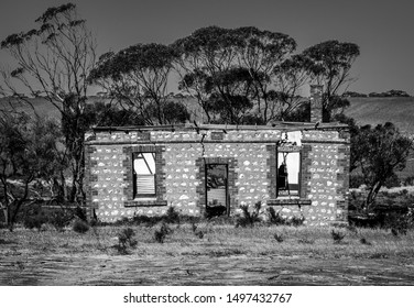 Moody ruins in black and white with eucalyptus trees in the Riverland, South Australia
