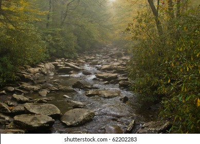 Moody scene of mist over Alum Cave Creek in Smoky Mountains National Park