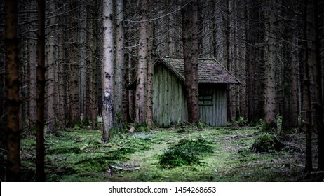 Moody Spooky Old abandoned Hut in Forest