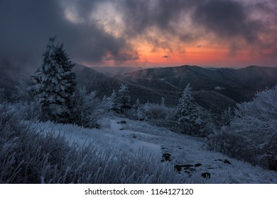 Moody sunrise over frozen mountain bald, Appalachian Trail, tennessee