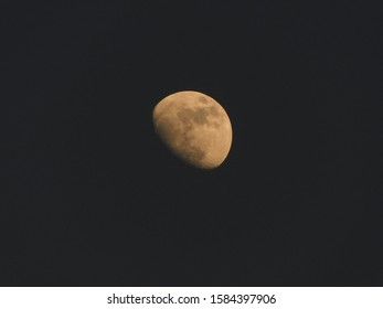 The Moon is an astronomical body that orbits planet Earth,Half Moon nature background