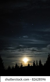 Moon cloudy shining above the dark forest