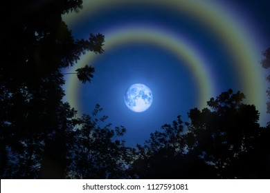 moon halo double rainbow silhouette grass and colorful sky, Elements of this image furnished by NASA