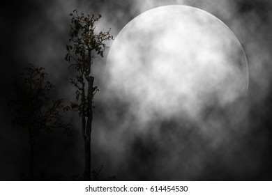 The moon in the night scary background.