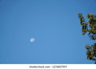 moon on blue sky clear.