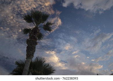 Moon on dramatic sunset sky with clouds . Palm tree against dramatic sunset sky.