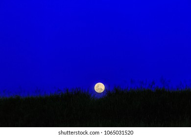 Moon on the ground with silhouette of grasses and open lighting pole during twilight blue sky