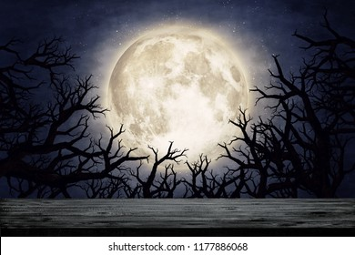 Moon over dry tree silhouette. Elements of this image furnished by NASA