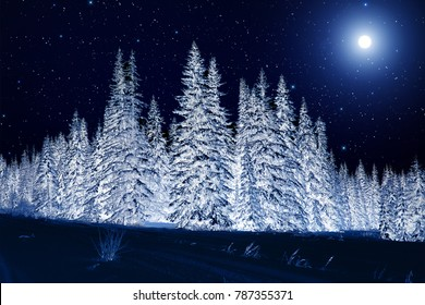 Moon over winter forest. Winter night landscape. Spruce forest in winter