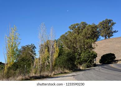 Moon Shot on the Road to Petaluma