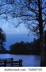 Moonlight in Teufelsmoor near Bremen / Germany