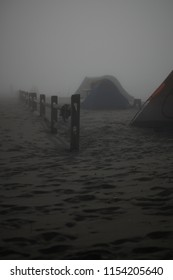 Moonlit Beach Campsite