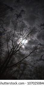 Moonlit night peeking through the clouds