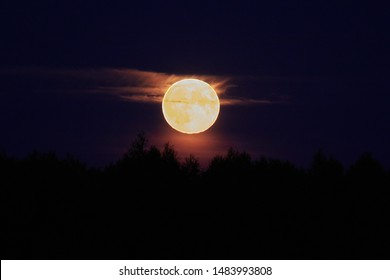 Moonrise darkness moonlight full night full moon yellow moon
