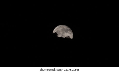 A Moonrise with silhouettes of trees and ocotillo in front of the face of the moon as it rises over a peak in the Catalina Mountains north of Tucson, Arizona in the Sonoran Desert. October of 2018.