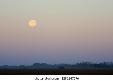 Moonset over the cypress and sawgrass prairie of Everglades National Park, Florida.