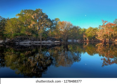 Moonset over the Suwannee River, north Florida