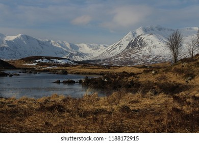 A moor with snow covered mountains in the background. Rannoch Moor, Scotland.
