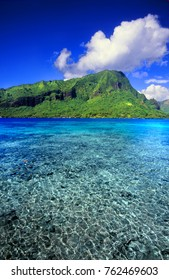 Moorea is a beautiful island covered in lush rainforests in French Polynesia