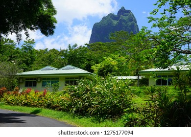 MOOREA, FRENCH POLYNESIA -2 DEC 2018- View of the Lycee Agricole Opunohu agricultural high school in  Moorea, French Polynesia.