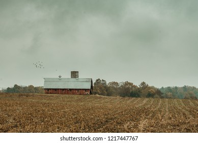 Mooresville IN USA 10 26 2018: A red barn located in a cornfield off a Indiana country road.