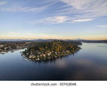 Moorland Meydenbauer Bay Bellevue Washington Mt Rainier Background