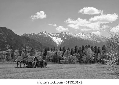 Moorlands called Murnauer Moos near Garmisch Partenkirchen in spring with the mountains of the bavarian alps in the background, black and white, Bavaria, Germany