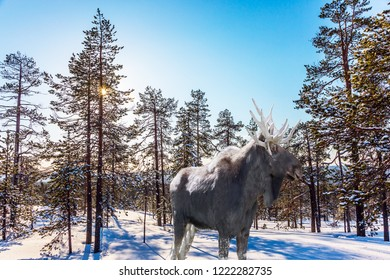 Moose with powerful horns resting on the edge of forest. Cold winter sunset in the Arctic. Christmas. Concept of active and ecological tourism