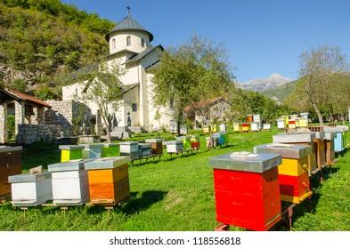 Moraca monastery, Montenegro - apiary