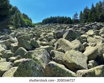 Moraines (moreni) near Aleko hut in Vitosha mountain, Bulgaria; kamenna reka (stone run) - Shutterstock ID 2030146727
