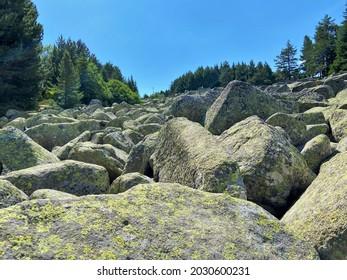 Moraines (moreni) near Aleko hut in Vitosha mountain, Bulgaria; kamenna reka (stone run) - Shutterstock ID 2030600231