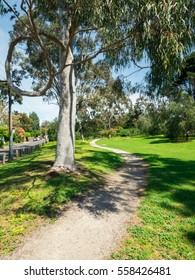 Morang Road Reserve is a small suburban park near the Yarra River in Hawthorn, Melbourne, Australia.