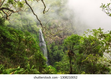 Morans falls located on Morans Creek in Gondwana Rainforests. The waterfall is situated within Lamington National Park in the Green Mountains, in the South East region of Queensland, Australia.