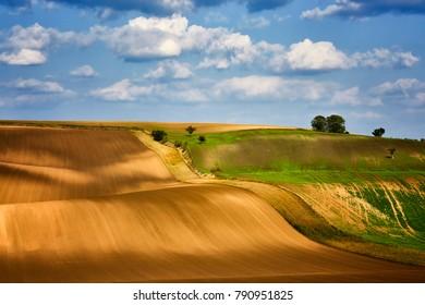 Moravian fields, Moravia, Czech Republic, around the village Kyjov